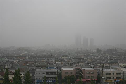 IMG_7118-小雨.jpg