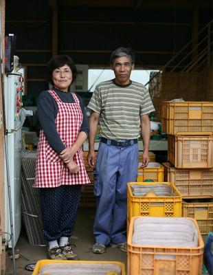 梨農家「大栄園」の園主 千葉県市川市 Japan